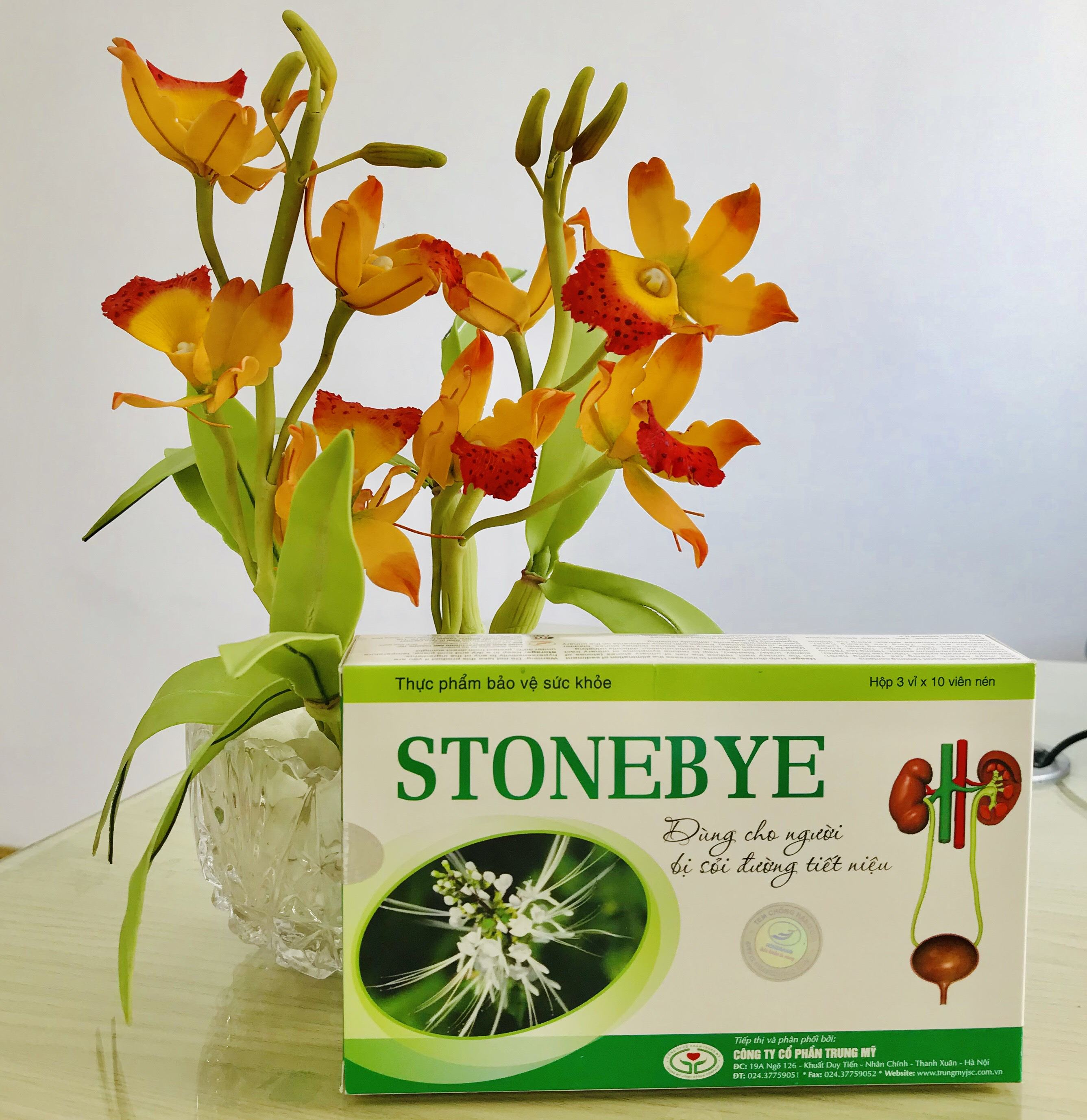 Stonebye – Giải pháp hỗ trợ sỏi tiết niệu và viêm tiết niệu